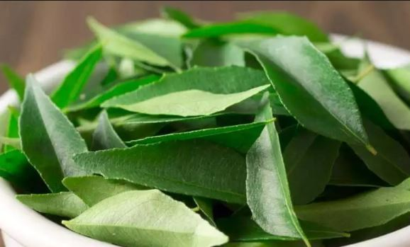 Curry leaves remedy for white hair