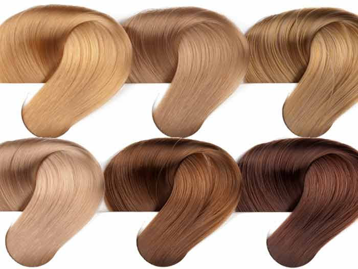 Golden Blonde Hair Color Dye Dark Light Medium Chart