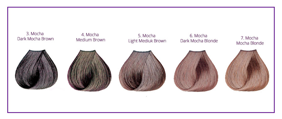 Mocha Hair Color Chart, Highlights Ideas with Pictures ...