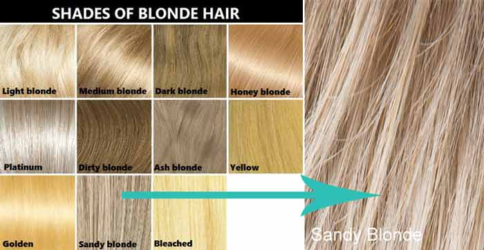 blonde color chart: Sandy blonde hair color dye chart pictures highlights