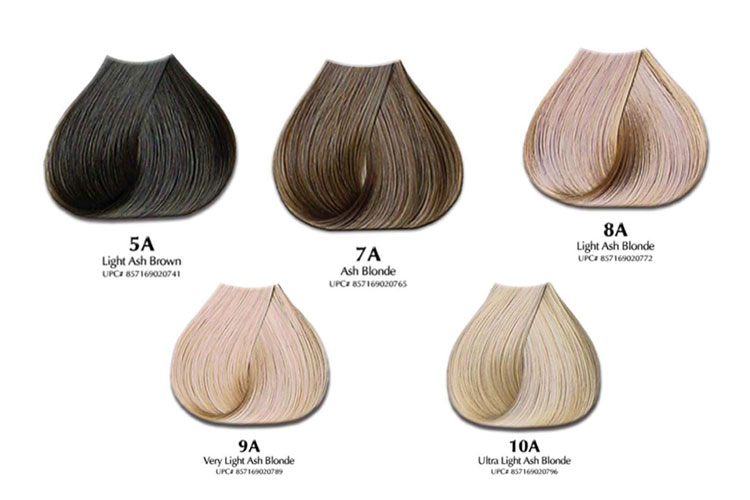 Ash Hair Color Amp Chart Will Ash Hair Color Offset Orange