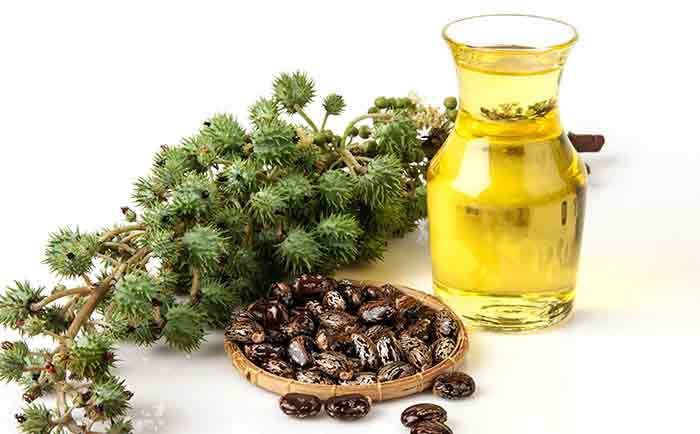castor and pepperming oil for hair uses
