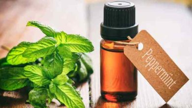 Photo of Pepper Mint Oil for Hair Growth Reviews, how to Use, Benefits & Side Effects